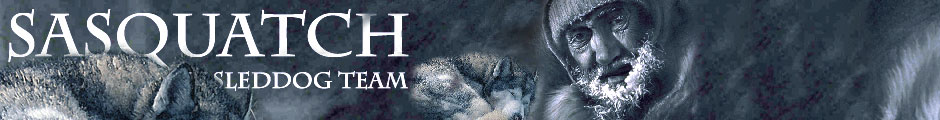 Team Sasquatch - Siberian Husky Sleddog Team